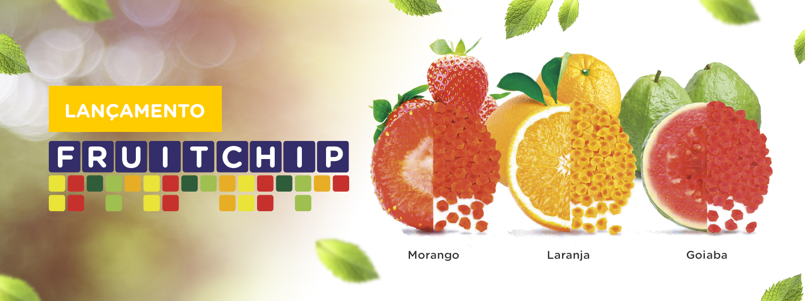 banner-fruitchip